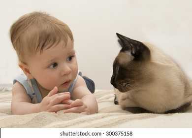 Baby and Siamese cat lying together on the bed
