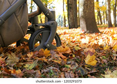 Baby stroller wheels in the park. The season is autumn. Around only maple leaves
