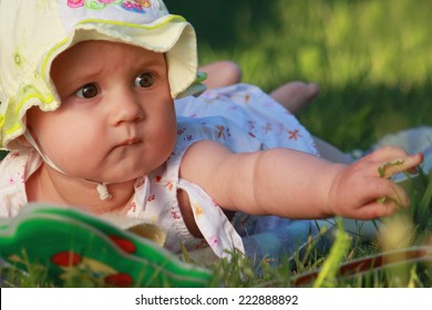 baby is watching a book on the grass