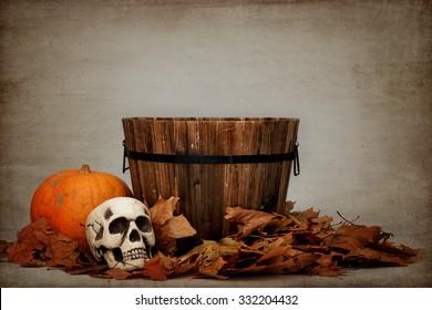 baby/pet digital Halloween backdrop