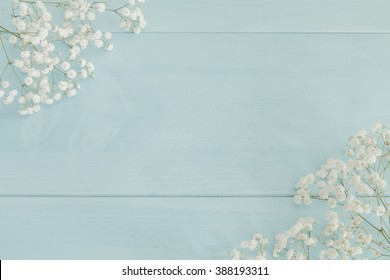 Baby's breath on light blue wooden background