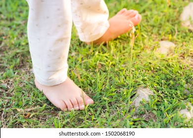 The baby's feet on the green grass field.