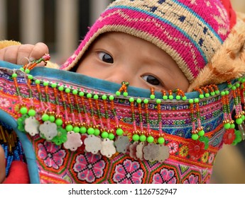 BAC HA, VIETNAM - MARCH 11, 2018: Cute Vietnamese Flower H'mong baby boy sits in an embroidered, traditional baby sling and looks at the camera, on March 11, 2018.