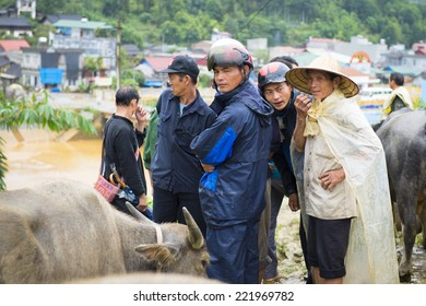 BAC HA, VIETNAM - SEP 21, 2014: Unidentified people watch buffalos at the Buffalo selling section at the Bac Ha Market, a large Sunday market with people wearing beautiful colored minorities costumes