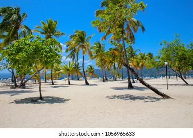 Bacardi Island Caribbean Beach