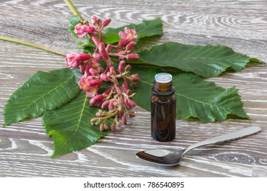 bach flower drops with spoon and red chestnut blooms