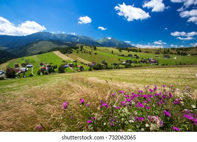 Bachledova valley in summer, eastern tratras Slovakia