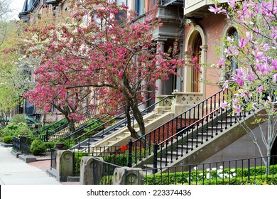 Back Bay Boston, elegant facades and gardens in early spring