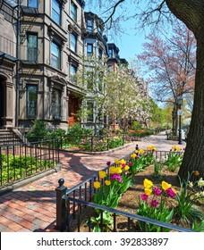 Back Bay brownstones, red brick sidewalk, spring flowers