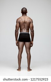 The back of fit young man with beautiful torso, isolated on gray background. The naked torso of African American man posing at studio. The sports, healthy lifestyle and bodybuilder concept.
