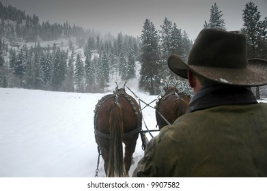 Back of horse coachman riding in the snow