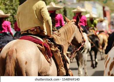 the back of a mexican charro with traditional mexican costume on his horse looking at the horizon
