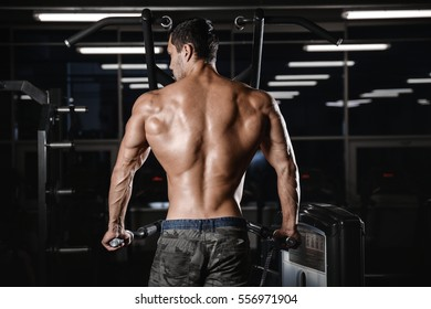 back muscle manâ??s back Male bodybuilder flexing his back