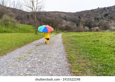 back portrait of a small boy walking in the distance across a meadow or forest path wearing a yellow raincoat, yellow rain boots and holding a colorful rainbow umbrella in his hand