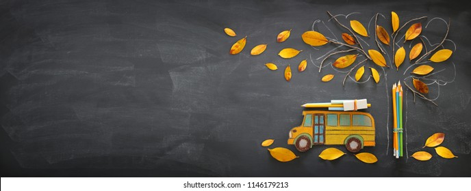 Back to school concept. Top view banner of school bus and pencils next to tree sketch with autumn dry leaves over classroom blackboard background