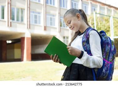 Back to school - portrait of beautiful young schoolgirl, education concept