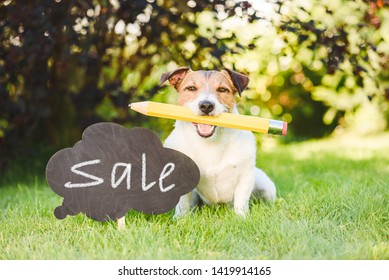 Back to school sale concept with dog holding giant pencil in mouth