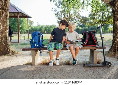 Back to school: Two boys reading notebook sitting on bench at school.