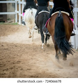 back side view of a group of riders riding horses