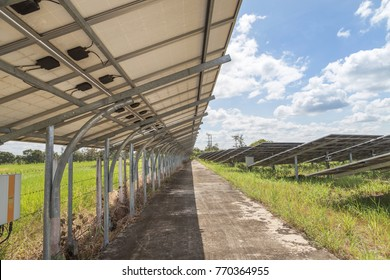 back side view rows of solar cells in power station turn up skyward absorb the sunlight from the sun use light energy to generate electricity alternative renewable energy from the sun