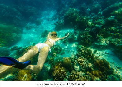 back and top view of a woman swimming deep in apnea of Surin Islands, Andaman Sea reef. Ko Surin Marine National Park, underwater scene. Watersport activity at North of Phuket, Phang Nga of Thailand.