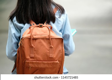 Back of university backpack, College student girl going to school with backpack, Back of universuty, college teenager student walking in campus background, education, back to school concept