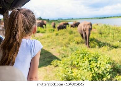 Back view of adorable little girl on safari in Sri Lanka observing elephants from open vehicle