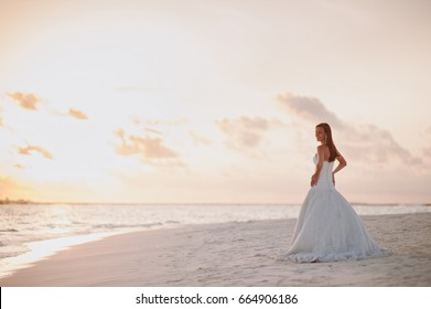 Back view of beautiful bride in white dress at sunset on ocean or sea coast on exotic island near water. Sun horizon. Sunny skyline. Wedding, honeymoon concept. Young woman rest on holiday on nature