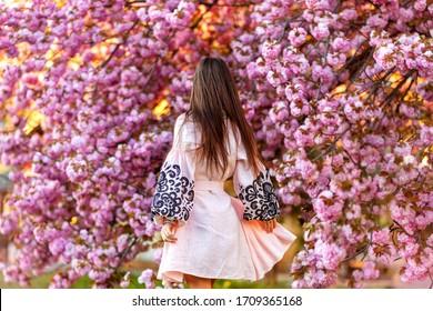 Vue de dessous de belle fille en robe traditionnelle ukrainienne rose dans le jardin fleuri (fleurs de cerisiers). le dos des femmes. heure de printemps