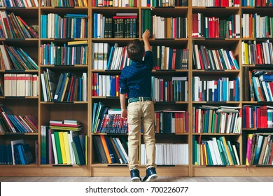 Back view, boy stretches after a book on multi colored bookshelf in library. Education, Knowledge, Bookstore, Lecture.