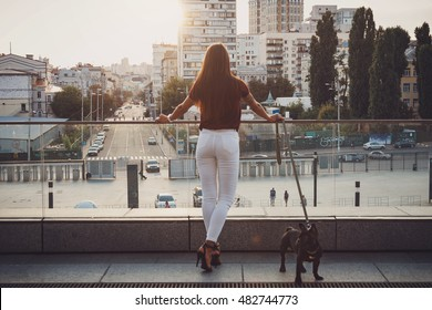 Back view of brunette young woman with french bulldog looking at the city streets