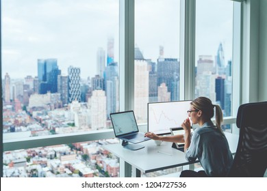 Back view of business woman sitting at panoramic skyscraper office desktop front PC computer with financial graphs and statistics on monitor. Analysis of digital market and investment in block chain