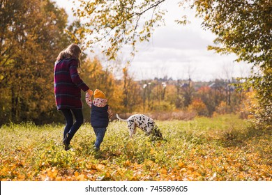 Back view of elder sister and little brother who walking in the park with their friend dalmatian dog