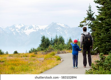 back view of family of two, father and son, enjoying mountain view in olympic national park, washington state, usa, active lifestyle concept