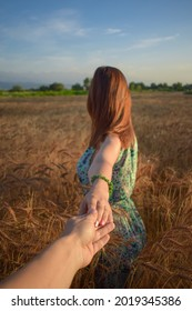 Back view of girl holding the hand of man and making him follow her on a rye field. Follow me concept on wheat field. Stylish girl holding hand of man on sunset field. Couple in love holding hands.