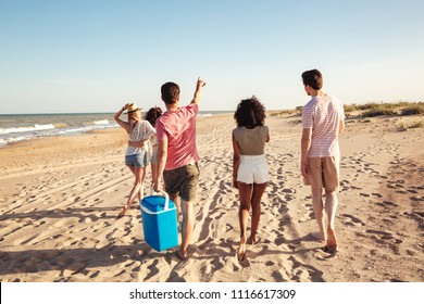 Back view of group of happy young friends in summer clothes going for a picnic at the beach and pointing away