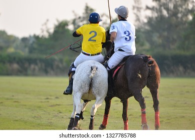 Back view of  The horse polo player and horse are battle in polo match.