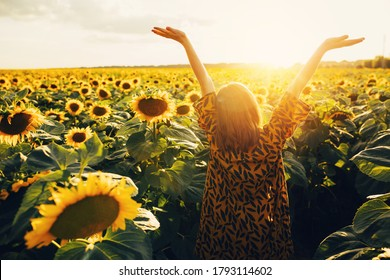 Back up view of joyful young woman raising hands up and enjoy warm sunny weather outside. Look up in sky. Stand alone in middle of big sunflower's field. August or September period. Harvest time - Shutterstock ID 1793114602