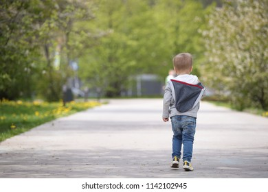 Back view of kid boy walking alone the park road in spring time. Trees in bloom.