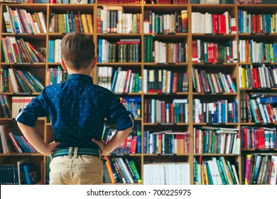 Back view, little pupil in library. Boy looking at multi colored bookshelf in library, keeping his hands on hips. Education, Knowledge.