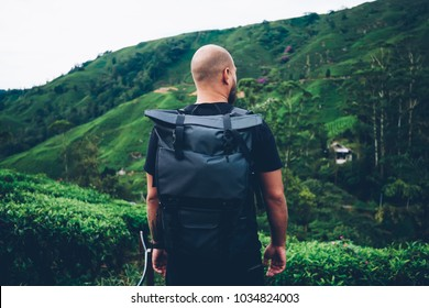 Back view of male explower with travel backpack enjoying natural environment of green tea plantation during trip in rainforest.Tourist with rucksack standing in asia wild valley during treck