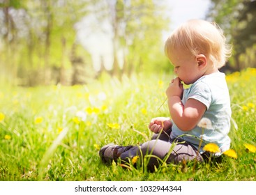 Back view on a cute little toddler boy in the park on a sunny summer day