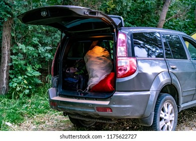 back view of opened car trunk packed full of luggage bags in nature camp