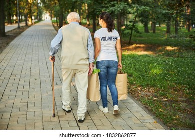 Back view portrait of elderly male walking with beautiful kind woman volunteer through the city park while she carrying shopping bags