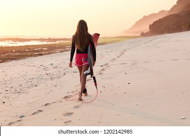 Back view of professional female surfer in diving suit walks across coastline near ocean, makes footprints on sand, covers long destination, carries surfboard for going in for sport on water.