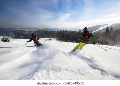 Back view of proficient male skiers in snow powder. Backcountry skiing. Using carving technique on wide open wooded hillside. Panoramic view of picturesque winter mountains and forest under blue sky.