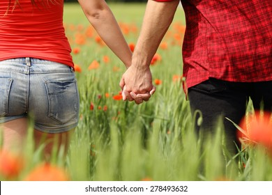 Back view of a romantic couple holding hands in a field with red flowers