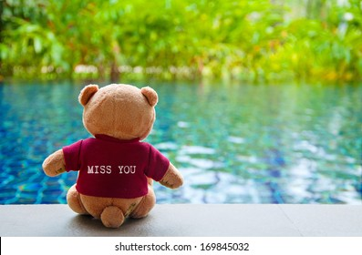 """Back view of Teddy Bear wearing red T-Shirt with text """"MISS YOU"""". Teddy Bear Sitting near Swimming Pool"""