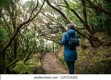 Back view of traveler woman walking in forest. Travel concept.  Anaga Country Park, Biosphere Reserve, Laurel forest, Tenerife, Canary islands