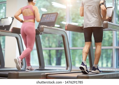 Back view of two people running on treadmills in gym during cardio workout, copy space